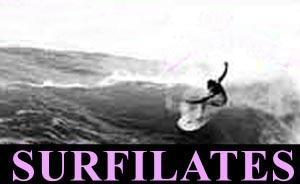 surfilates2g1