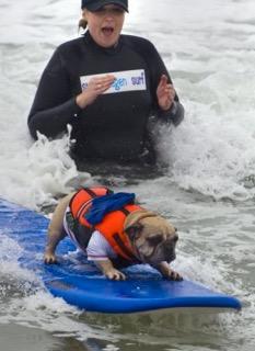Interview: Deagen the Cali SurfingDog
